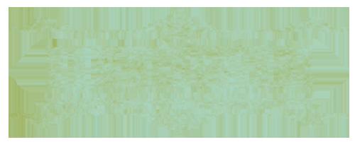 hbirds_logo_medium